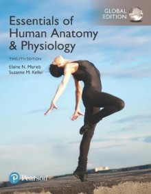 Essentials of Human Anatomy & Physiology, Global Edition av Elaine N. Marieb og Suzanne M. Keller (Heftet)