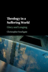 Omslag - Theology in a Suffering World