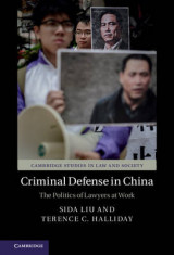 Omslag - Criminal Defense in China