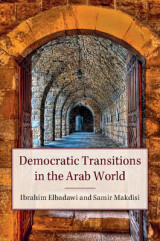 Omslag - Democratic Transitions in the Arab World