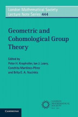 Omslag - Geometric and Cohomological Group Theory