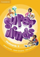 Omslag - Super Minds Level 5 Flashcards (Pack of 93)