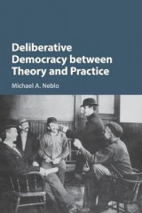 Omslag - Deliberative Democracy Between Theory and Practice
