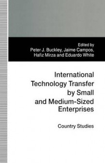 International Technology Transfer by Small and Medium-Sized Enterprises 1997 (Heftet)