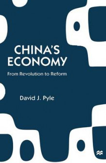 China's Economy 1997 av David J. Pyle (Heftet)