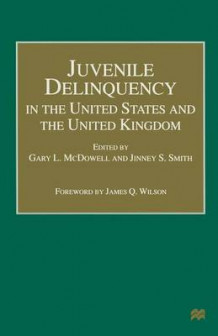 Juvenile Delinquency in the United States and the United Kingdom 1999 (Heftet)