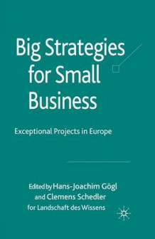 Big Strategies for Small Business (Heftet)