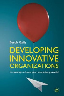 Developing Innovative Organizations 2011 av Benoit Gailly (Heftet)
