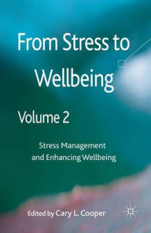 From Stress to Wellbeing: Volume 2 (Heftet)