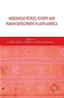 Indigenous Peoples, Poverty and Human Development in Latin America (Heftet)