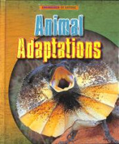 Animal Adaptations av Louise Spilsbury og Richard Spilsbury (Innbundet)