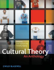 Cultural Theory (Heftet)