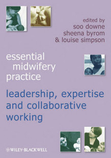Essential Midwifery Practice - Leadership, Expertise and Collaborative Working av Soo Downe, Sheena Byrom og Louise Simpson (Heftet)