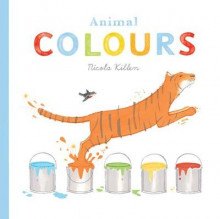 Animal Colours av Nicola Killen (Pappbok)