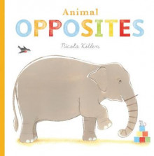 Animal Opposites av Nicola Killen (Pappbok)