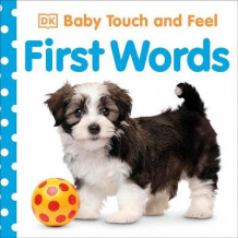 Baby Touch and Feel First Words av DK (Pappbok)