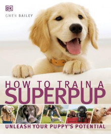 How to Train a Superpup av Gwen Bailey og DK (Heftet)