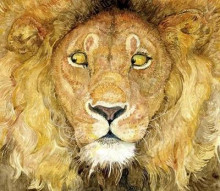 The Lion and the Mouse av Jerry Pinkney (Heftet)