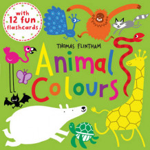 Animal Colours (BB) av Thomas Flintham (Heftet)