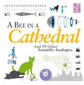 A Bee in a Cathedral av Joel Levy (Heftet)