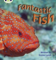 Fantastic Fish: Non-Fiction Set 12 av Emma Lynch (Heftet)