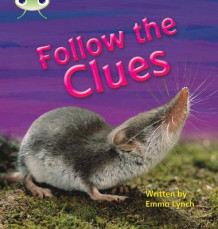 Follow the Clues: Non-Fiction Set 18 av Emma Lynch (Heftet)