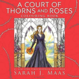 Omslag - A court of thorns and roses colouring book