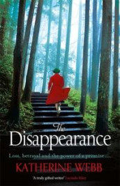 The disappearance av Katherine Webb (Heftet)