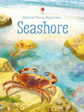 Young Beginners Seashore av Emily Bone (Innbundet)