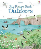 Big Picture Book of Outdoors av Minna Lacey (Innbundet)