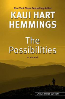 The Possibilities av Kaui Hart Hemmings (Innbundet)