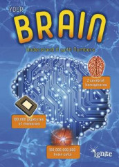 Your Brain: Understand it with Numbers (Your Body by Numbers) av Melanie Waldron (Heftet)