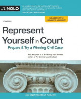 Omslag - Represent Yourself in Court