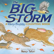 The Big Storm av Nancy Tafuri (Innbundet)