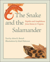 Omslag - The Snake and the Salamander