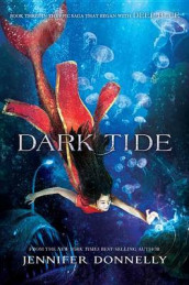Waterfire Saga, Book Three Dark Tide (Waterfire Saga, Book Three) av Jennifer Donnelly (Innbundet)