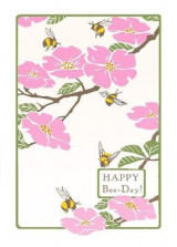 Omslag - Happy Bee-Day (Boxed)