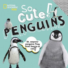 So Cute: Penguins av National Geographic Kids og Crispin Boyer (Innbundet)