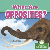 What Are Opposites? av Miranda Kelly (Heftet)