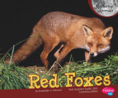 Red Foxes av Judith Angelique Johnson (Innbundet)