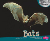 Bats av Judith Angelique Johnson (Innbundet)
