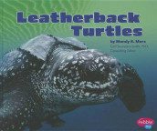Leatherback Turtles av Mandy R Marx (Innbundet)