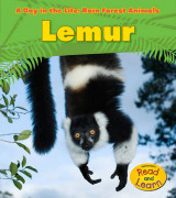 Omslag - Lemur (A Day in the Life: Rain Forest Animals)