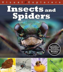 Insects and Spiders av Toby Reynolds og Paul Calver (Heftet)