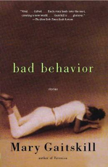 Bad Behavior av Mary Gaitskill (Heftet)