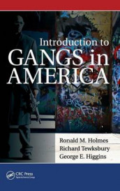 Introduction to Gangs in America av George Higgins, Ronald M. Holmes og Richard Tewksbury (Innbundet)