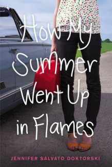 How My Summer Went Up in Flames av Jennifer Salvato Doktorski (Heftet)