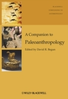 A Companion to Paleoanthropology (Innbundet)