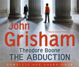 Omslag - Theodore Boone: The Abduction: 2