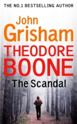 Omslag - Theodore Boone: The Scandal
